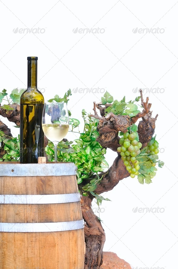 Wine cellar. - Stock Photo - Images