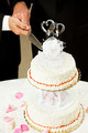 Gay Marriage - Cutting Wedding Cake - PhotoDune Item for Sale