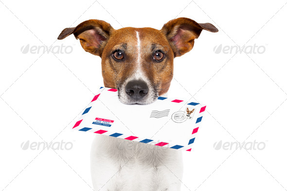 PhotoDune mail dog 2626328