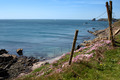 Pembrokeshire coastal path - PhotoDune Item for Sale
