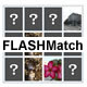 FLASHMatch - ActiveDen Item for Sale