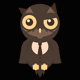 NightOwlAudio