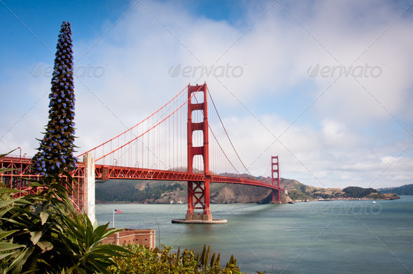 Golden Gate Bridge San Francisco - Stock Photo - Images