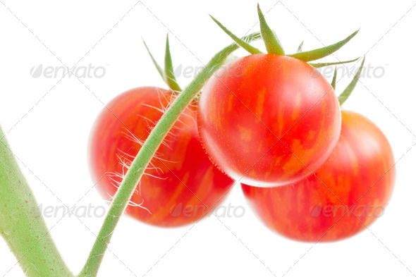 Bunch Of Tomatoes On White Background - Stock Photo - Images