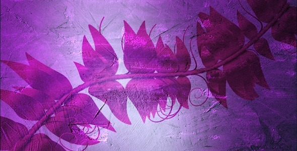 Wall Art Collection Pink Vine HD Loop