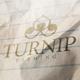 Turnip Logo - GraphicRiver Item for Sale