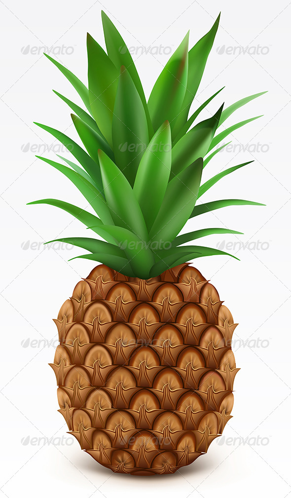 Fresh pineapple  - Food Objects