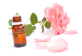 Rose essential oil - PhotoDune Item for Sale