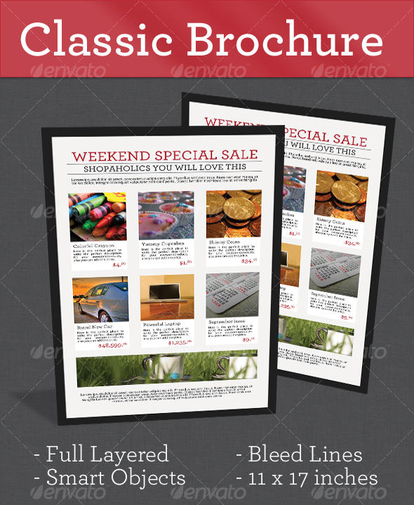 GraphicRiver Classic Brochure 97369