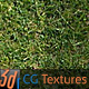 Grass Lawn Hi-Res Texture 02 'Single Stripe'