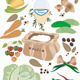 Vegetables and Spices  for Pickling or Salting - GraphicRiver Item for Sale