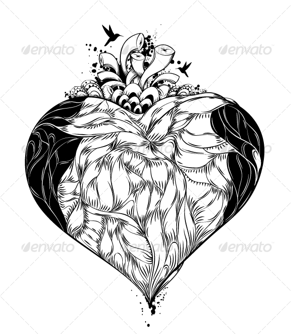 illustration of heart