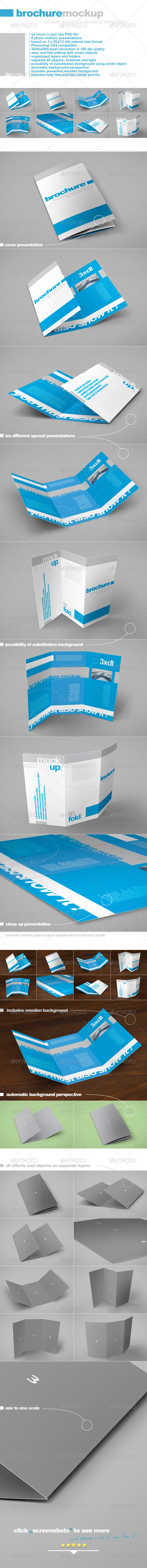 Tri-Fold DL brochure - Brochures Print