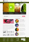 05_homepage4.__thumbnail