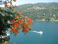 Tranquil Scene with flowers, Isola Bella - PhotoDune Item for Sale
