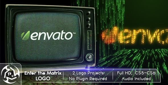 After Effects Project - VideoHive Enter The Matrix Logo 2729259