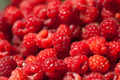 Red Raspberry fruit - PhotoDune Item for Sale