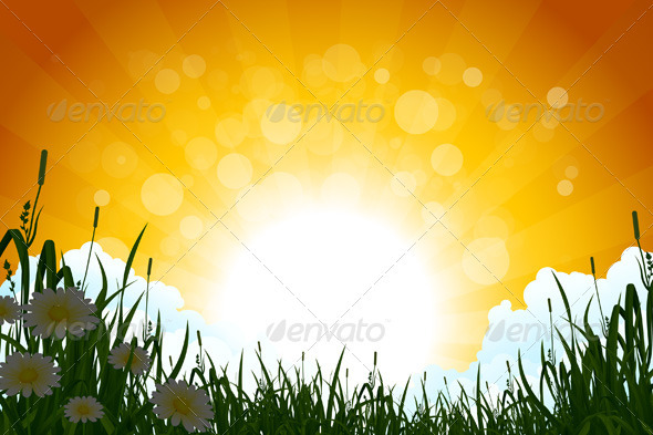Amazing Sunrise Landscape with Grass - Landscapes Nature