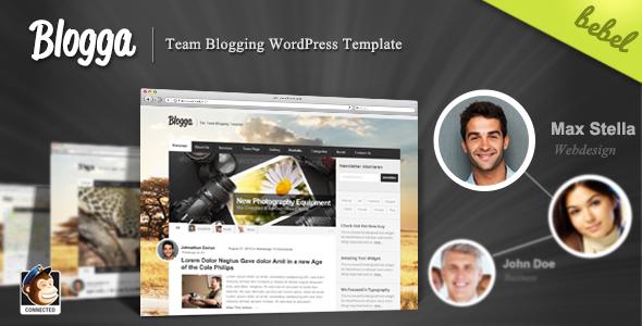 Blogga - A New Team Blogging Premium Theme for WordPress