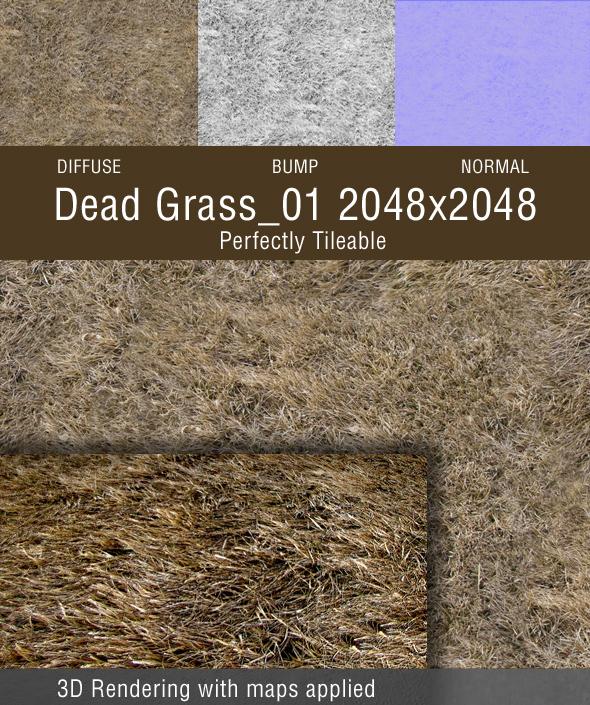 3DOcean Dead Grass 01 98169
