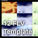 12 FLV Template - ActiveDen Item for Sale