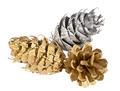 Painted cones - PhotoDune Item for Sale