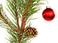 Christmas tree branch - PhotoDune Item for Sale