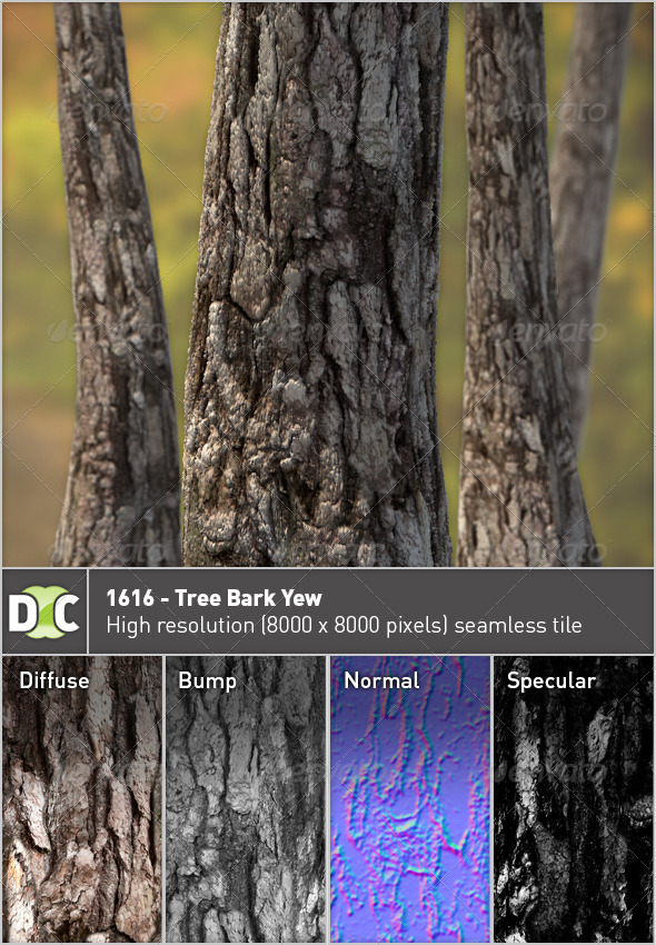 3DOcean 1616 Tree Bark Yew 2758827