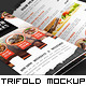 Trifold Brochure Mockup Pack - GraphicRiver Item for Sale