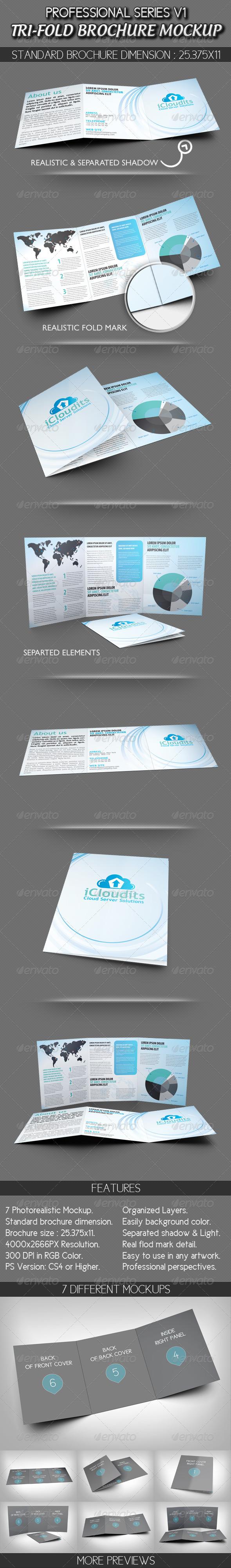 Professional Tri-fold Brochure Mockup V1 - Brochures Print