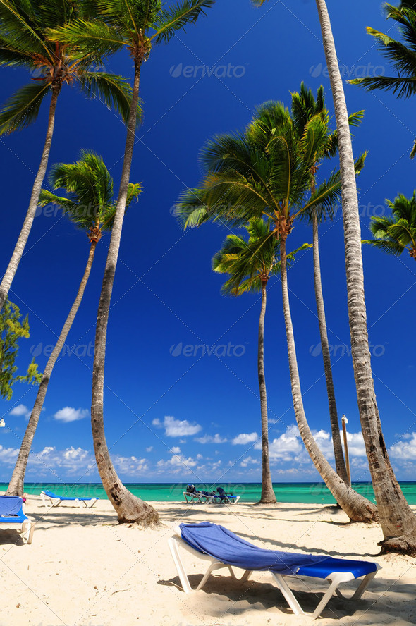 Stock Photo - PhotoDune Sandy Beach On Caribbean Resort 200324