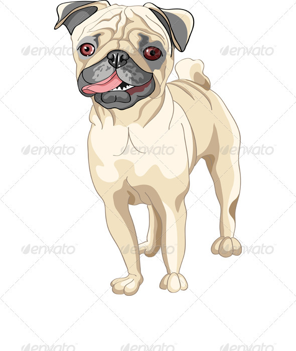 Vector Sketch Dog Smile Fawn Pug Breed  - Animals Characters