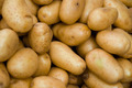 Potatoes - PhotoDune Item for Sale