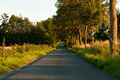 Country road - PhotoDune Item for Sale