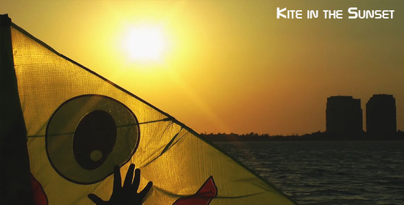 Kite In The Sunset 2