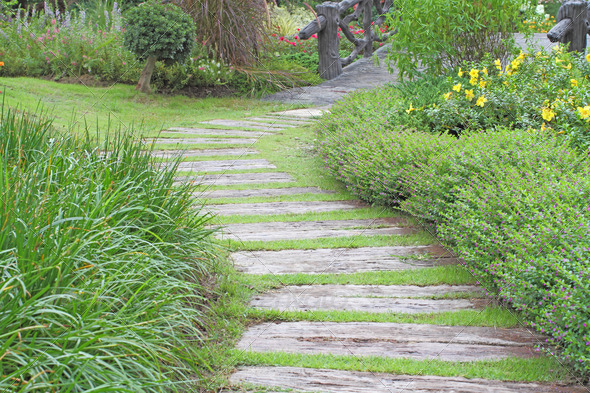 way in the garden - Stock Photo - Images