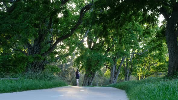 VideoHive Female Running Along Park Path 19025541