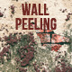 5 Grunge Brick Wall Peeling Textures - GraphicRiver Item for Sale