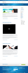08_sterling-responsive-website-template-screenshot-7.__thumbnail