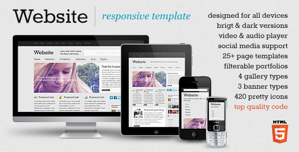 ThemeForest Website responsive template 993139