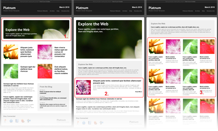 Platnum Email Template, 6 Layouts, 8 Colors - Creating new layouts.