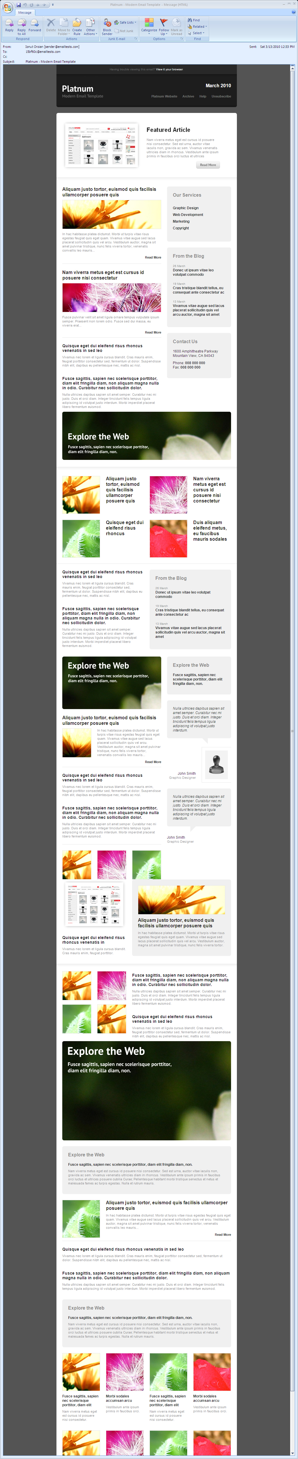 Platnum Email Template, 6 Layouts, 8 Colors - Outlook 2007 - All elements listed.