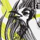 Tshirt Illustration - Bird - GraphicRiver Item for Sale