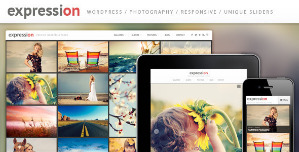 Expression Photography Responsive WordPress Theme - Photography Creative
