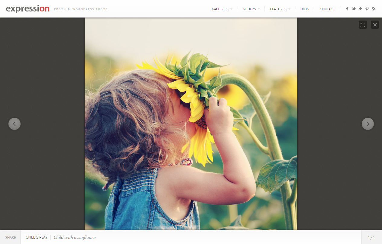 Expression Photography Responsive WordPress Theme