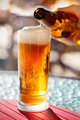 Beer pouring into glass - PhotoDune Item for Sale