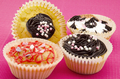 Assortment of delicious cupcakes - PhotoDune Item for Sale