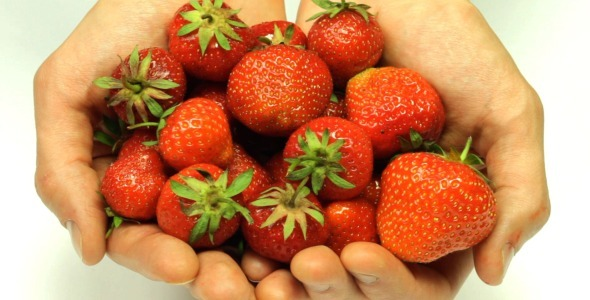 Male Hands With Strawberries