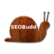 SEOBudd SEO keyword targeter WordPress plugin