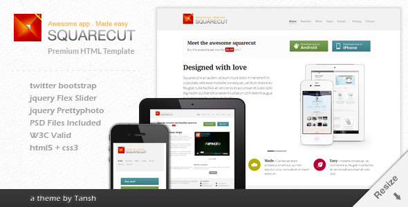 Squarecut Responsive Landing Page template - Software Technology